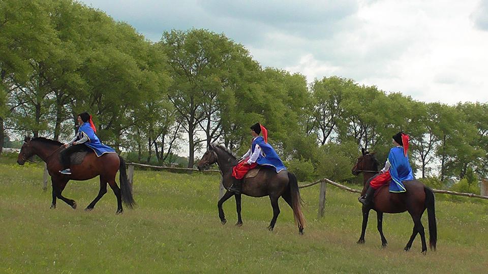 Свято Козацької слави